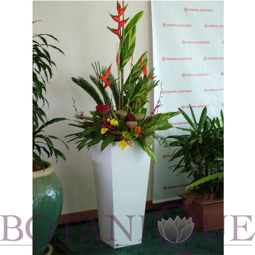 corporate-flowers-gold-coast-australia-entry-flowers.jpg