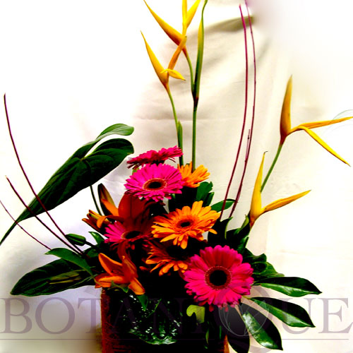 corporate-flowers-gold-coast-australia-modern.jpg