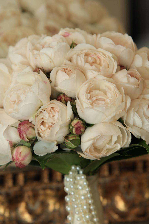karissa-david-austin-roses.jpg