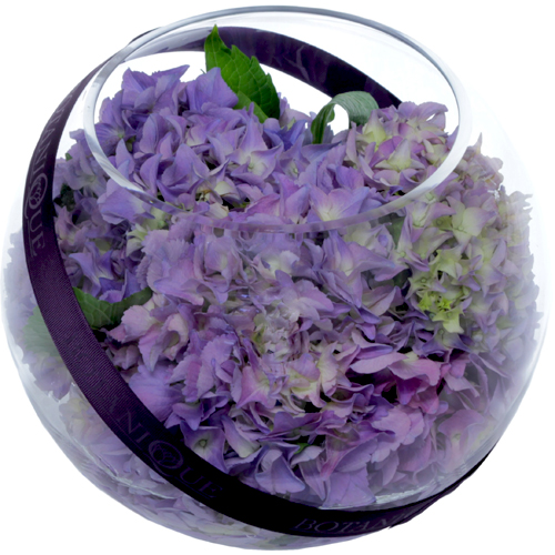 purple-hydrangea-fish-bowl-flower-arrangement-for-gold-coast-delivery.jpg