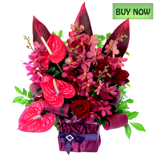 valentines-flowers-box-arrangement-for-gold-coast-delivery-botanique-florist-australia.jpg