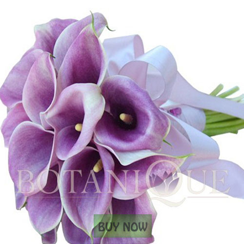 wedding-flowers-gold-coast-australia-purple-calla-lily-posy-botanique-flowers-buy-now.jpg
