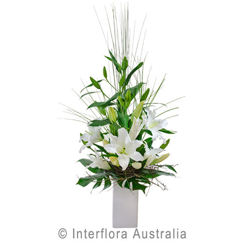 Elegant white flower arrangement in ceramic pot for Gold Coast Delivery today.