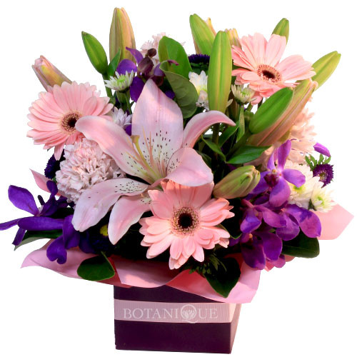 Pink  purple Flowers Gold Coast Delivery.