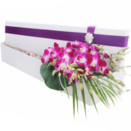 Cerice Singapore Orchids in our signature silk lined Hollywood box with diamante buckle accent