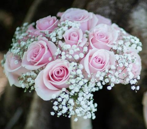 Baby's Breath and Pink Roses