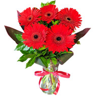 MARKET SPECIAL - 5 Gerberas in Glass Vase