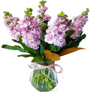 MARKET SPECIAL - Fragrant Stock in Vase