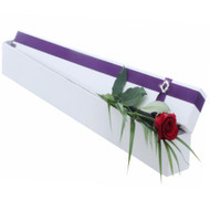 Single Red Rose in a Hollywood Presentation Box