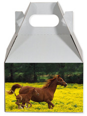 Horse party favor box