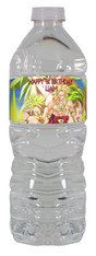 Dragon Ball Z Broly water bottle label