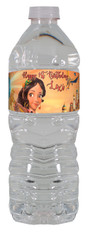Elena of Avalor water bottle label
