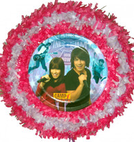 Camp Rock Pull String Pinata