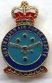 RAAF Cadet Crest Lapel Pin