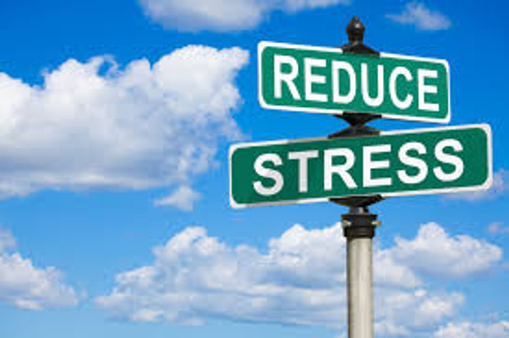 How to Remain Stress-Free When Printing for Your Business!