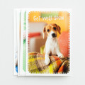 BX CD - Get Well - Whiskers & Paws