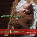 Praise & Harmony CD - Wonderful God