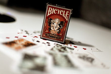 Butterfly Deck by USPCC (Bicycle Playing Card Stock)