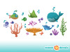 Under the Sea Wall Decals - Detailed - Sunny Decals