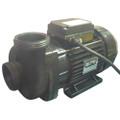 Davey Spa Quip MaxiFlow 3.0hp 1 Speed Spa Booster Pump
