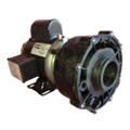 Sundance High Flow Circ Spa Pump