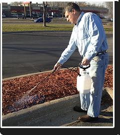 mulch-glue.png