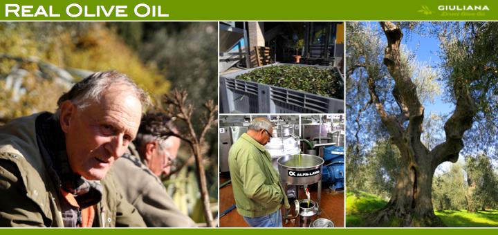 real olive oil.jpg