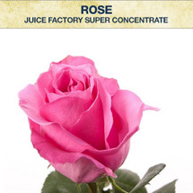 JF Rose Super Concentrate
