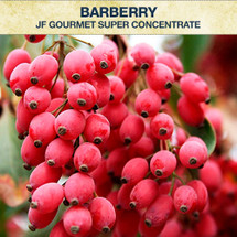 JF Gourmet Barberry Super Concentrate