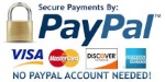 paypal-payments-small.jpg