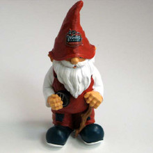 2010 Winter Classic Gnome