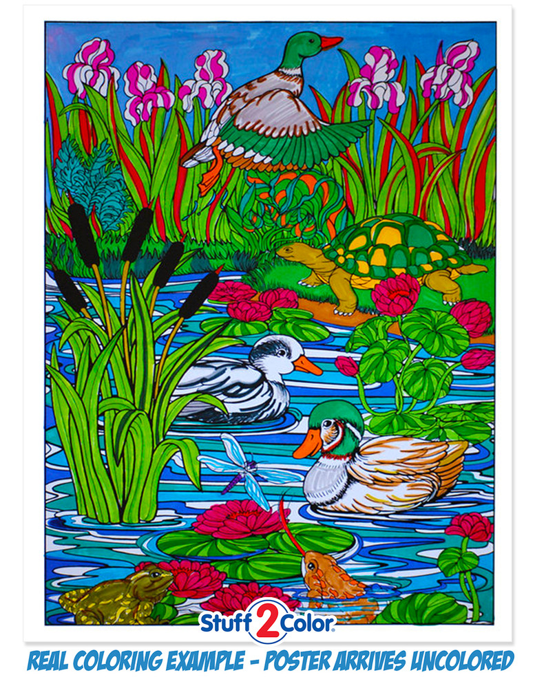 Duck Pond fully colored sample.
