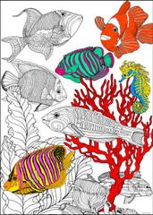 Ocean Fish - 10x14 Coloring Poster