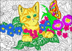 Kitten - 10x14 Coloring Poster