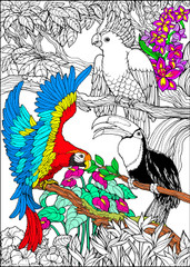 Jungle Birds - 10x14 Coloring Poster
