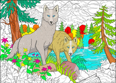 Wolves - 10x14 Coloring Poster