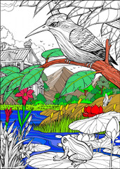 Bird and Frog - 10x14 Coloring Poster