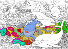 Dolphin - 10x14 Coloring Poster
