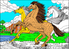 Horses - 10x14 Coloring Poster