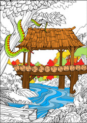Chinese Bridge - 10x14 Coloring Poster