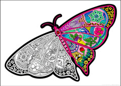 Butterfly 10x14 Inch Coloring Poster