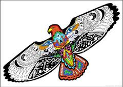 Hawk Coloring Poster