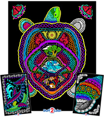 Geo Turtle - Fuzzy Coloring Poster with 2 Bonus Designs