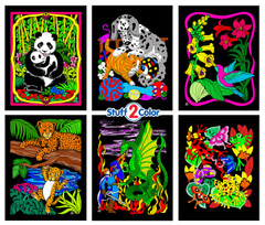 Panda, Kitten, Hummingbird, Leopards, Dragon, Frog (6-Pack)
