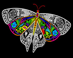 Butterfly - Fuzzy Velvet Coloring Poster - Inner Nature