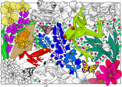 Frogtopia - 10x14 Coloring Poster