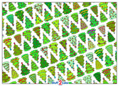 Christmas Tree Pattern - 10x14 Coloring Poster