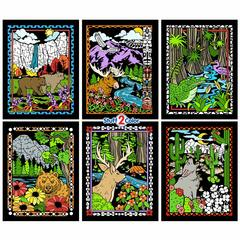National Parks - Fuzzy Poster 6-Pack