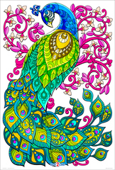 Ornate Peacock  - Giant Detailed Coloring Poster for Kids and Adults