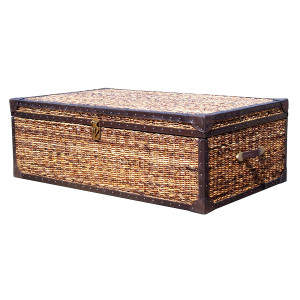 Trunk Coffee Table Zin Home